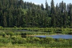 горы горы озера lac de Франции creno Корсики корсиканские Стоковые Изображения RF