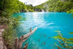 горы горы озера lac de Франции creno Корсики корсиканские стоковая фотография rf