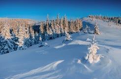 Горы загадочного ландшафта зимы величественные внутри В ожидании праздник Драматическая зимняя сцена Счастливое новое… пиво! Стоковые Фото