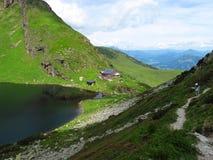 Горы зеленой травы, облачное небо, сизоватый помох стоковые изображения rf