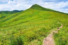 Горы зеленой травы пути благоустраивают холм природы горных склонов Стоковое Изображение