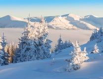 Горы зимы высоты Стоковая Фотография