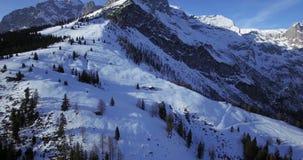 Горы зимы и forrest сток-видео