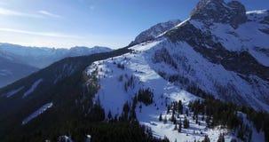 Горы зимы и forrest акции видеоматериалы