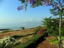 Горы Израиля Tiberius Стоковые Изображения RF