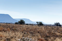 3 горы и дерева - ландшафт Cradock Стоковое Изображение RF