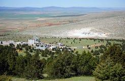 Горы и завод стоковое фото
