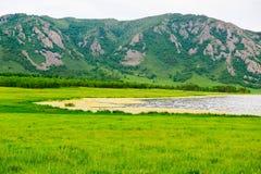 Горы и злаковик Стоковые Изображения RF