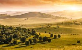 Горы и злаковик в лете Стоковая Фотография RF