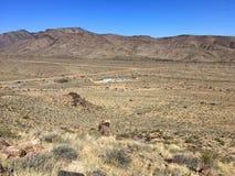 Горы и кактусы в Аризоне дезертируют под голубым небом Стоковые Фото