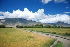 Горы и поля Стоковое Фото
