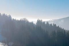 Горы и пуща Стоковое фото RF