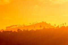 Горы и силуэты на заходе солнца, Цейлон деревьев стоковые фотографии rf