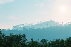 Горы и силуэты на заходе солнца, Цейлон деревьев стоковые изображения
