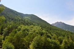 Горы Кавказа, красивые Стоковые Фотографии RF