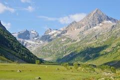 Горы Кавказа, красивые Стоковые Фото