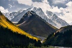 Горы Казахстана стоковое фото rf
