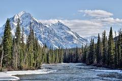 Горы Канады, национальный парк яшмы стоковая фотография