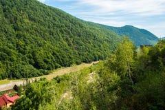 Горы Карпата Стоковые Фото