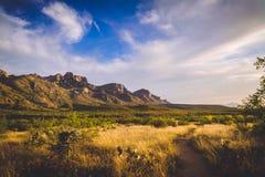 Горы Каталины стоковые фото