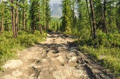 горы к путю Стоковое Изображение