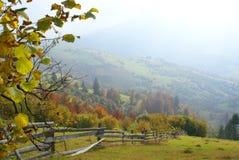 горы ландшафта осени прикарпатские стоковые изображения rf
