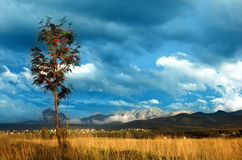горы ландшафта Стоковое Фото