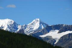 Горы, ледники и лес национальныйа парк Аляски Wrangell стоковая фотография