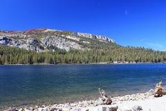 Горы, леса и озера в мамонте, CA стоковые изображения