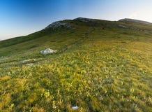 горы лужков Стоковое Фото