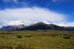 Горы национального парка в Патагонии, Чили Torres del Paine Стоковое Фото