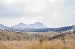 Горы на горизонте стоковые изображения rf
