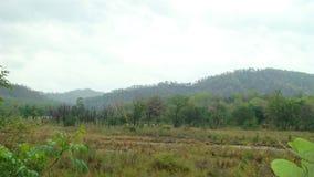 Горы на день overcast Стоковые Изображения RF