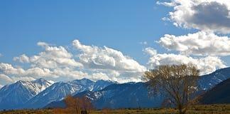 горы Невада Стоковые Изображения RF