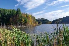 горы озера естественные стоковое фото rf