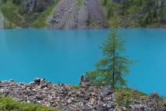 горы горы озера lac de Франции creno Корсики корсиканские Altai, Россия стоковое изображение rf