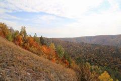 Горы осени с листьями желтого цвета на деревьях Стоковые Фото