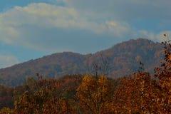 Горы осени Стоковые Изображения