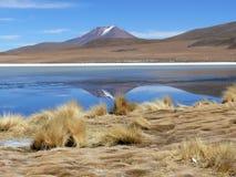 Горы отражая в озере Стоковые Изображения