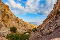 Горы о мертвом море Стоковое фото RF
