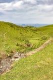 Горы Пиренеи француза вымачивают холмы злаковика в мае с rill горы стоковое изображение rf