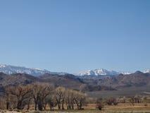 Горы покрытые снегом, голубое небо, ландшафт пустыни Стоковое Фото