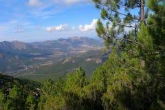 Горы покрытые с хвойными деревьями, Корсикой Стоковое фото RF