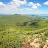 Горы покрыли деревья стоковое изображение