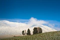 горы поля просто Стоковая Фотография RF