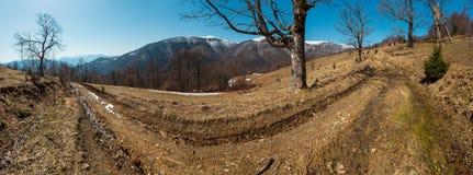 Горы предыдущей весны прикарпатские стоковые изображения rf