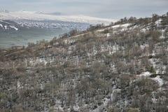Горы предыдущей весны в Армении Стоковые Изображения RF