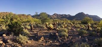 Горы пустыни Аризоны Стоковые Изображения RF