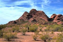 горы пустыни Стоковые Фото