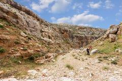 Горы пустыня Негев каньона в Израиле Стоковое Изображение
